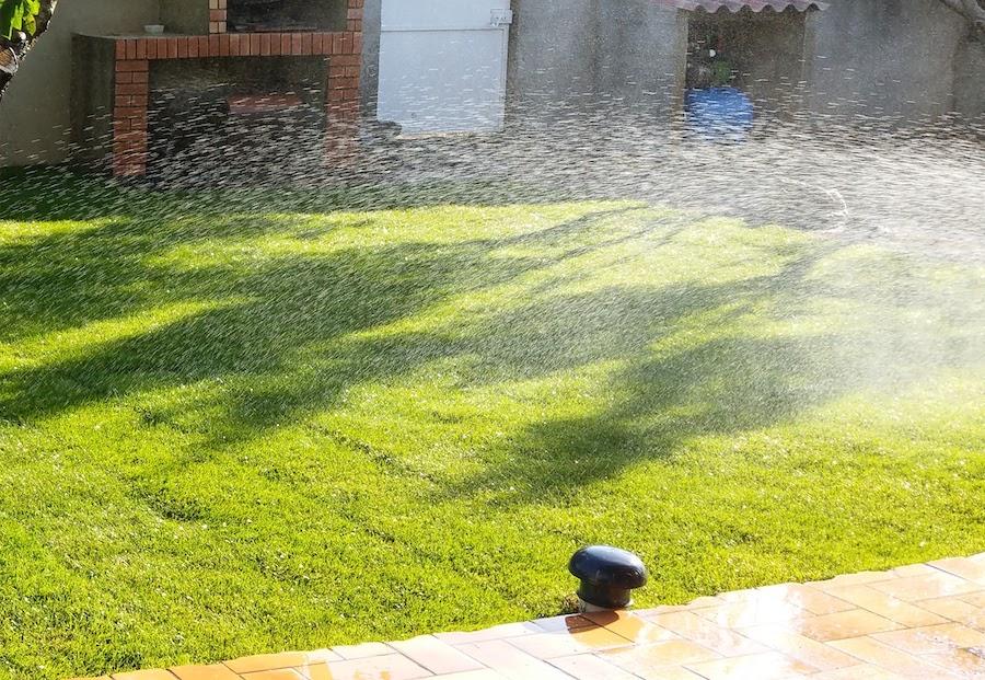 irrigation du gazon naturel dans le 66 Perpignan