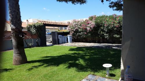pelouse-naturelle-jardin-projet-66