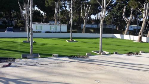 pose-pelouse-artificielle-jardin-particulier-66