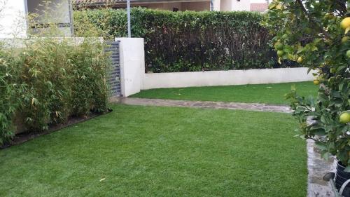 projet-pose-pelouse-naturelle